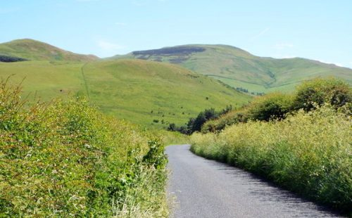 cheviot-above-benfield600